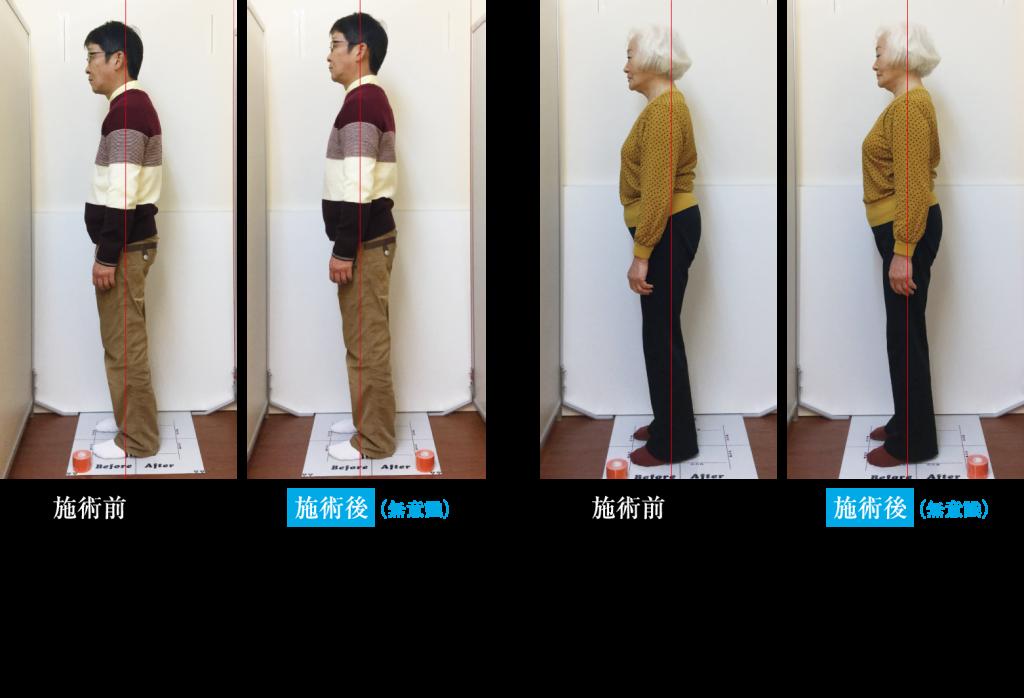姿勢分析 並列比較