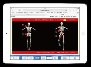 自律神経調整 運動機能分析システム/姿勢検査/施術技術 整体院・整骨院・接骨院・リハビリなどで、腰椎ヘルニア/脊柱管狭窄症/五十肩/変形性膝関節症の早期改善と再発を予防します。運動分析は根本施術として利用される独自の施術方法です。アスリートや大学病院の医師も通われる整体技術です。京都市右京区 太秦天神川駅徒歩2分 京都市右京区、中京区、上京区にお住まいの方は、【松村整体】にお任せください。