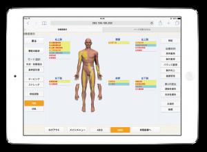 筋肉整体 筋肉施術 運動機能分析システム/姿勢検査/施術技術 整体院・整骨院・接骨院・リハビリなどで、腰椎ヘルニア/脊柱管狭窄症/五十肩/変形性膝関節症の早期改善と再発を予防します。運動分析は根本施術として利用される独自の施術方法です。アスリートや大学病院の医師も通われる整体技術です。京都市右京区 太秦天神川駅徒歩2分 京都市右京区、中京区、上京区にお住まいの方は、【松村整体】にお任せください。
