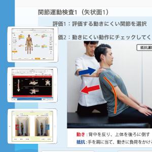 動作検査 姿勢分析
